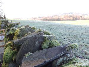 Jan15 stone wall