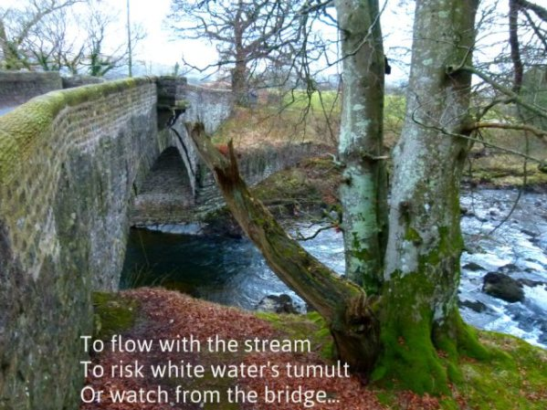 To flow with the stream To risk white water's tumult Or watch from the bridge...