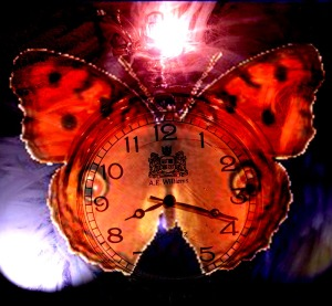 Butterfly Watch for Nine Deadly Butterfly