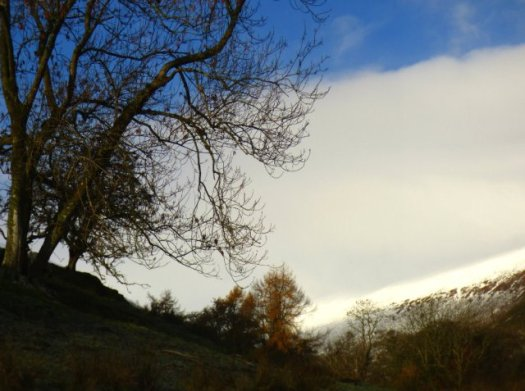 cumbria-long-meg-snow-castlerigg-loki-kirkby-stephen-052