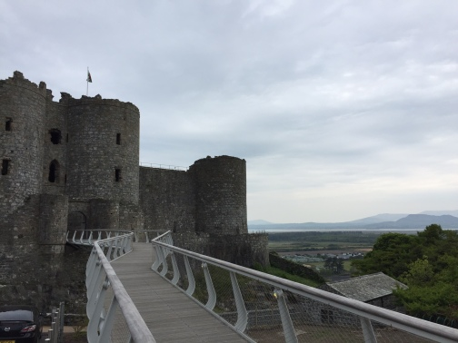 Harlech Castle and estuary ace