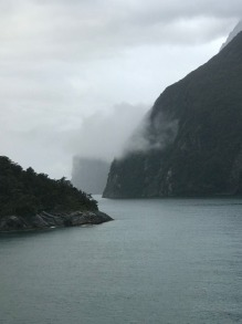 cruise new zealand fjords - 5