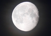 mask-in-forest-blog-12may20-moon-1